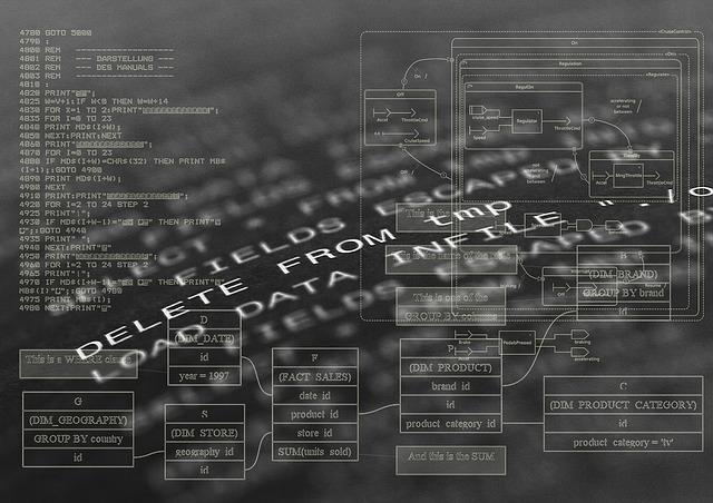 Softwareentwickler: Ein Beruf mit perfekten Zukunftsaussichten