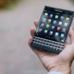 blackberries-1377071_640